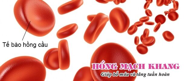 Thiếu máu là khi cơ thể không có đủ số lượng hồng cầu khỏe mạnh cần thiết